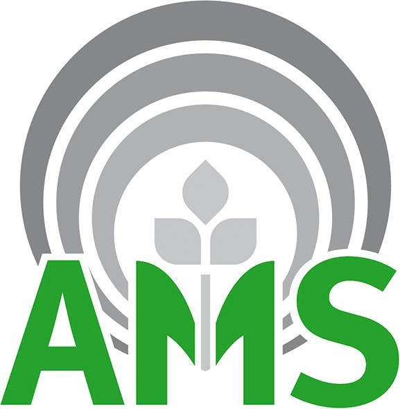 logo-AMS